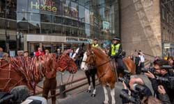 PW_SCOTLAND_NEWS_WARHORSE_EDINBURGH FESTIVAL THEATRE_3.JPG