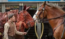PW_SCOTLAND_NEWS_WARHORSE_EDINBURGH FESTIVAL THEATRE_12.JPG